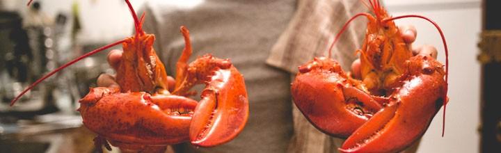 Soirée homard