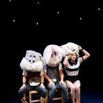 <b>Montréal Complètement Cirque</b>